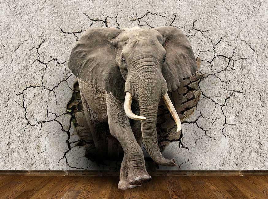 Wall? Elephant? Both?